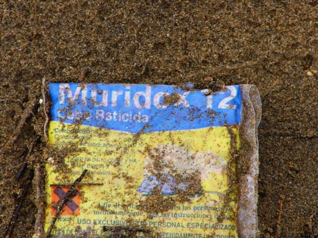 ¿Raticida en la playa de Sopelana?