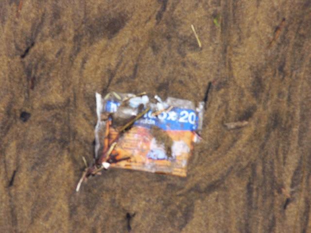 raticida en la playa de sopelana