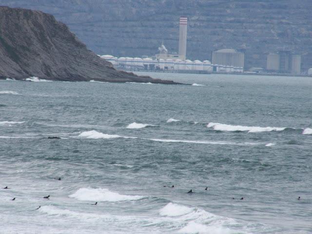 Sesión de surf del 29 de Mayo del 2007, Sopelana, olas de medio metro revuelto