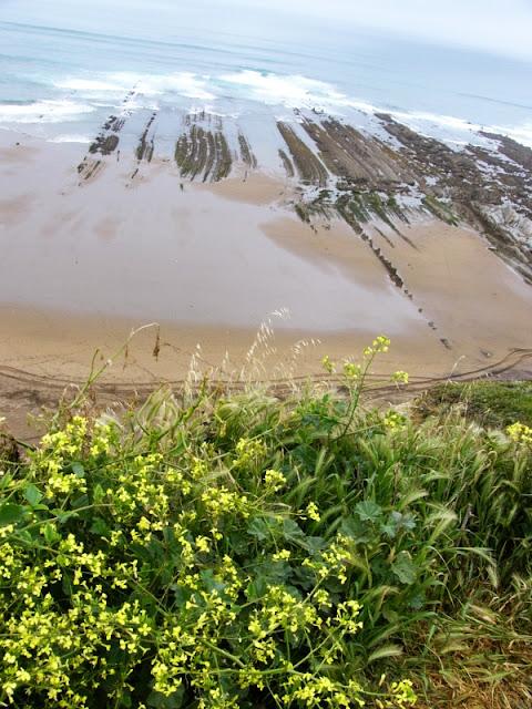 sesión de surf del 18 de mayo en la bati, sopelana, olas de medio metro