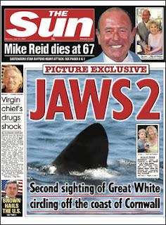 tiburones asesinos en newquay
