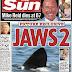Los tiburones 'asesinos' de Newquay