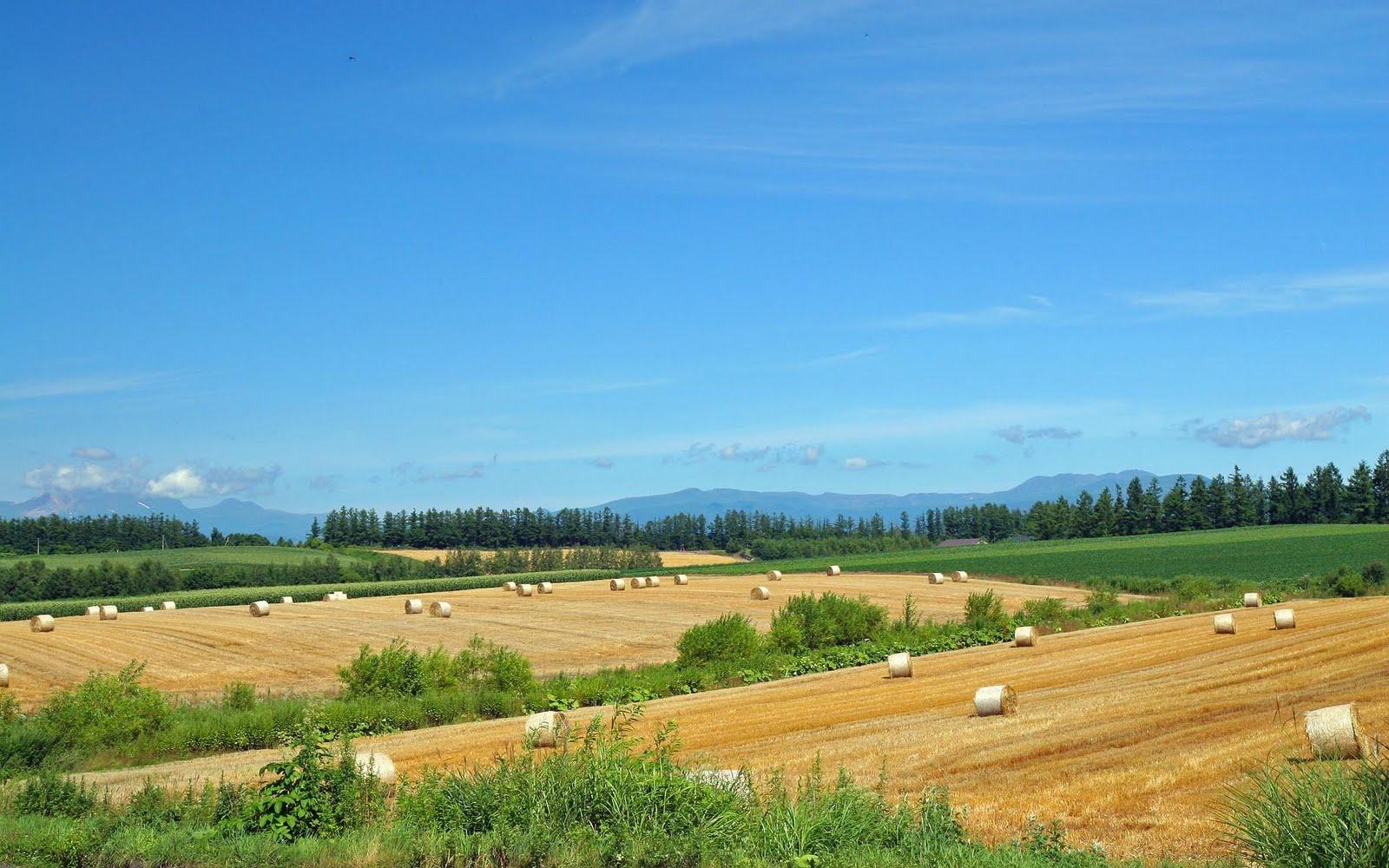 japan hokkaido landscape image - photo #19