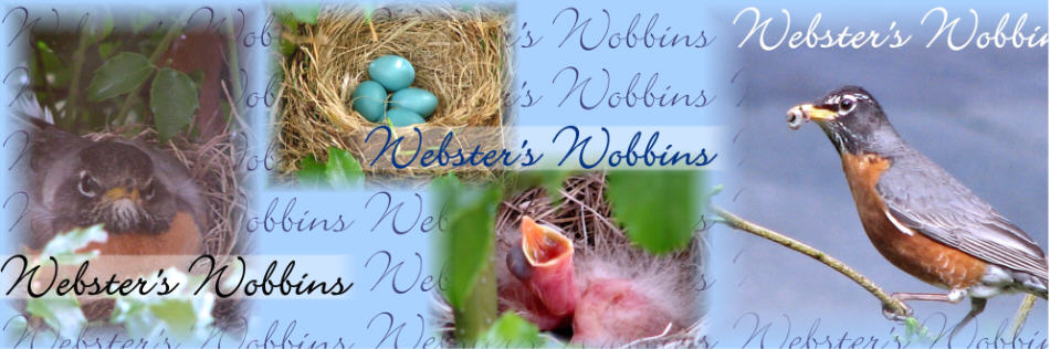 Webster's Wobbins