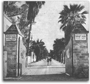 מקווה ישראל - שער הכניסה