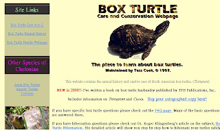 Box Turtle Care and Conservation Website