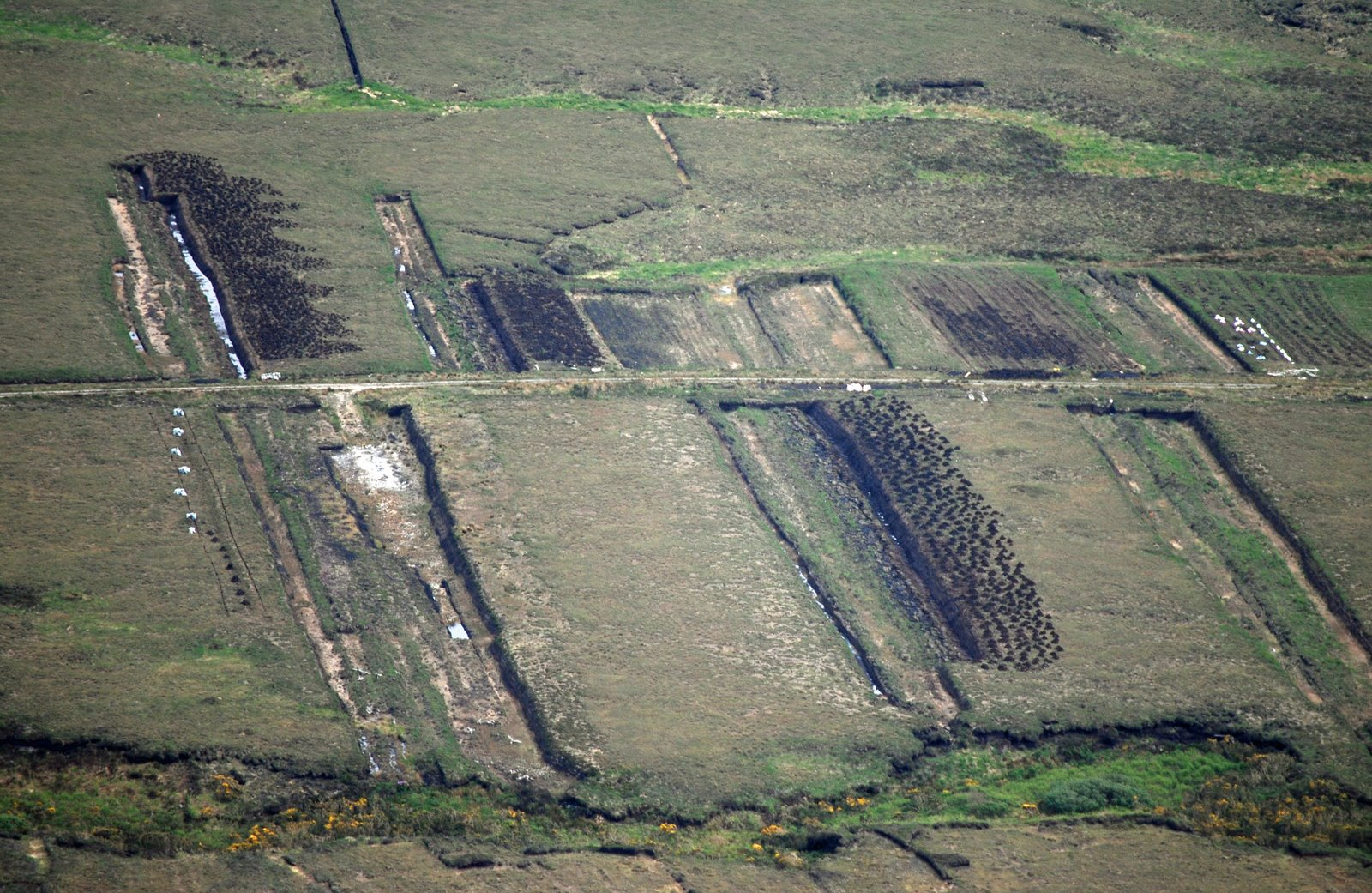 peat bog, achill island, ireland