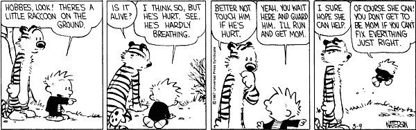 Sometimes Calvin says it all