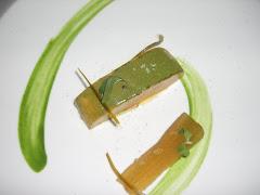 Foie con aloe vera y stevia rabaudiana (El Poblet))