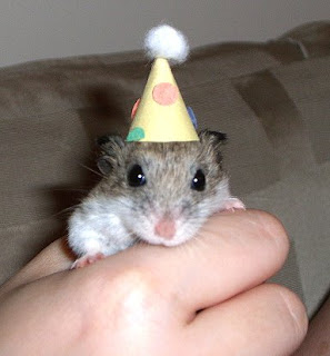 the mousie apocalypse! little critters in party hats