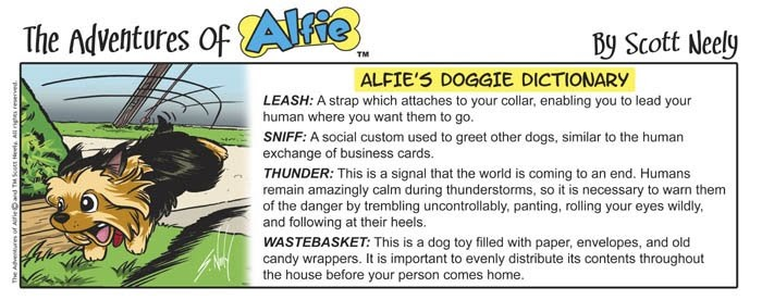 alfie 39 s backyard alfie 39 s doggie dictionary