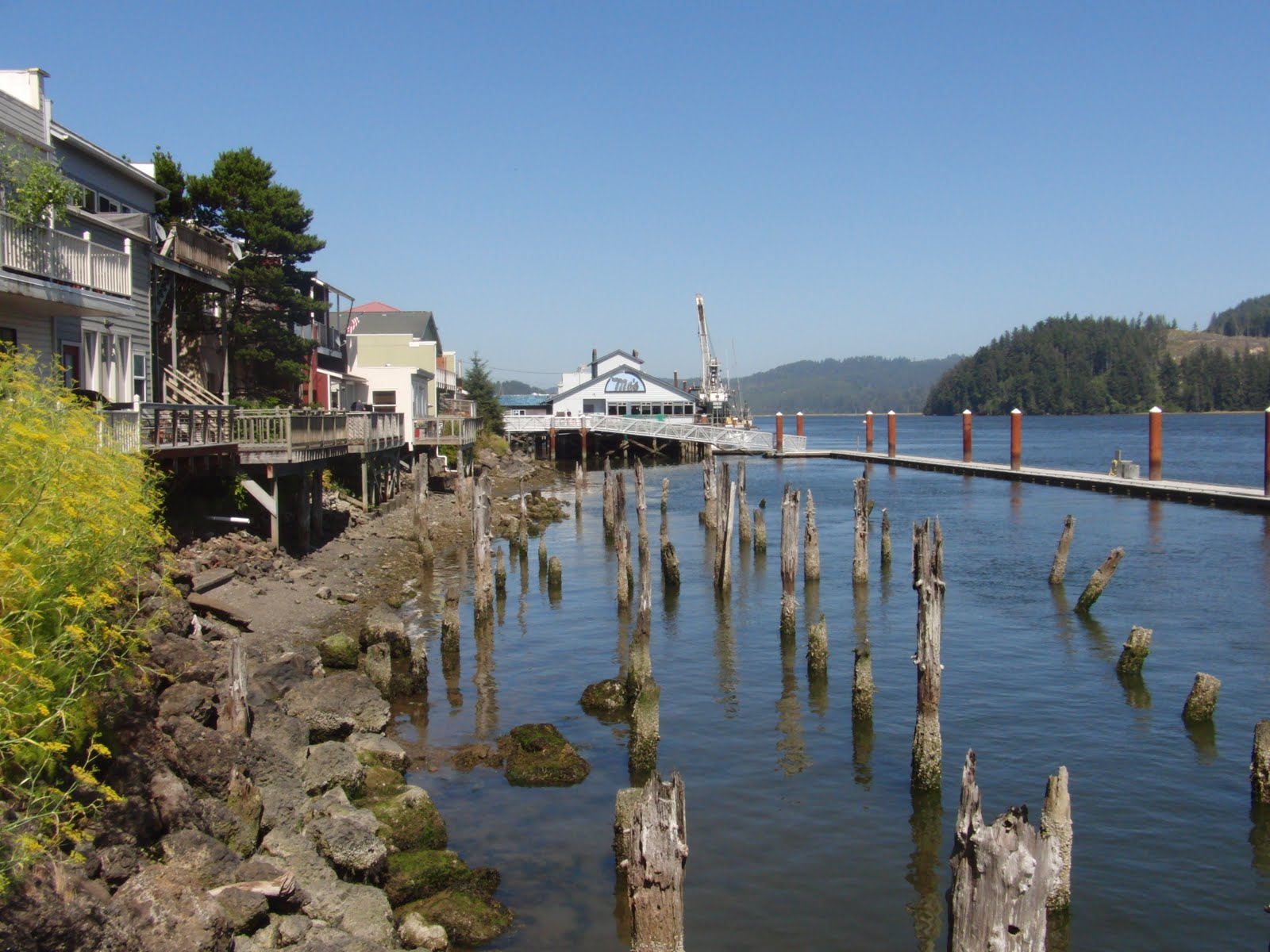 Rv Along The Oregon Coast Pacific Pines Rv Park Florence Or