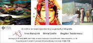 X3, expoziţie de grup, Irina Butuşină, Silvia Costin, Bogdan Teodorescu