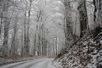 冬天的瑞士