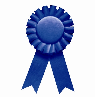 ladyswish: LadySwish gets a Blue Ribbon