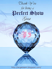 My Interview - Perfect Show
