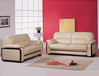 Freshen your living environment with this sofa set, featuring leather