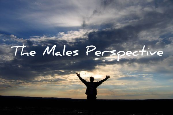 Welcome To The Male Perspective