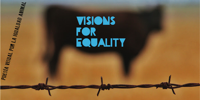 Visions for Equality