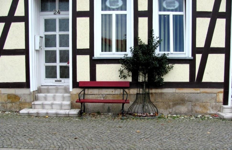 garten anders immergr nen ilex an kahle stellen pflanzen im winter fehlt es oft an gr n. Black Bedroom Furniture Sets. Home Design Ideas
