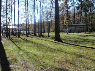 Timberhawg Investments - Georgia Land for Sale