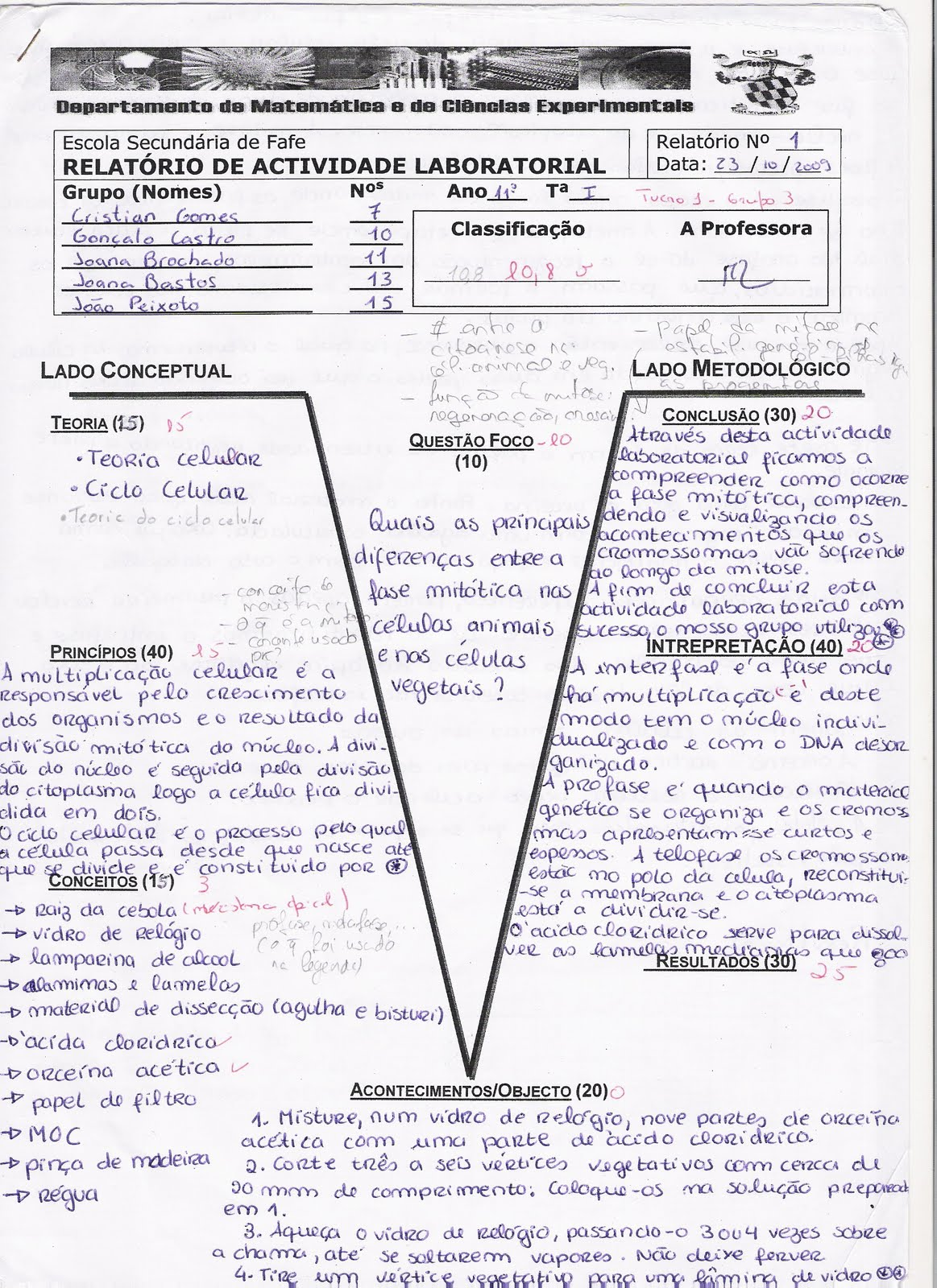 ABC da Biologia e Geologia 11º: RELATÓRIOS | 1163 x 1600 jpeg 389kB