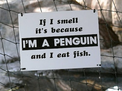 Funny-Animal-Signs