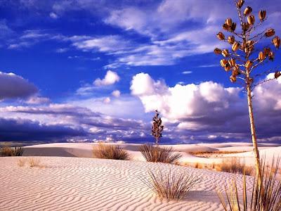desert wallpapers. Desert Wallpaper
