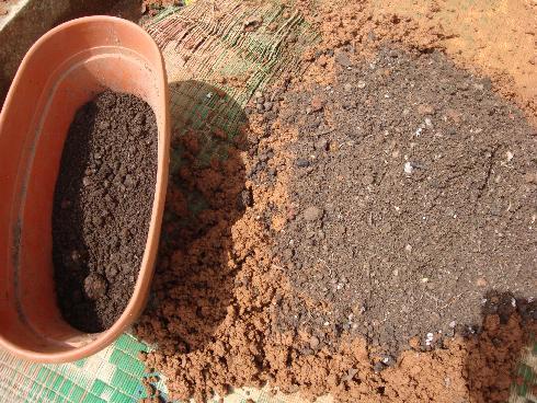 Organic micro farm and vegetable terrace garden fertile for Preparation of soil