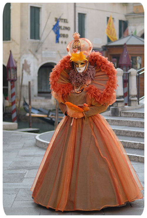 Ultra Cool Fun Carnival Costume Venice