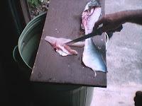 Como Limpiar el Pescado 5
