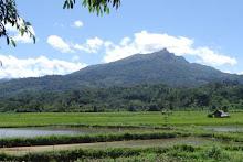 Sesean Mountain, Tana Toraja