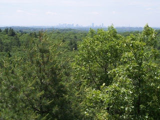 photo from Mount Gilead, Lynn Woods, Lynn