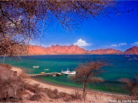 History and Legend of Komodo Island Flores