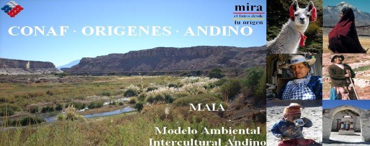 Conaf Origenes Andino