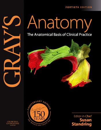 Gray's anatomy 40th edition free download ~ medical books and.