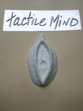 "tactile mind cover (click on pic for voiceprint interview, may 2009. click ""search"" tactile mind)"