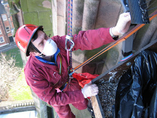 Nick Evans adjusts camera 2, having just helped scrape up many bird bones and feathers from the peregrine nest ledge