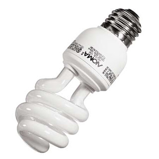 enregy efficient flouroscent bulb