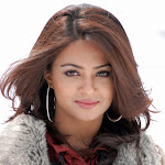 Surveen Chawla Hot Sexy HQ wallpapers,pics,stills