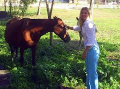 Minha paixão por cavalos...
