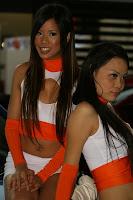 Race Queens of Super Import Nights