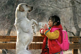 Review Film Heart is    (Movie - 2006) - Korea Cantik