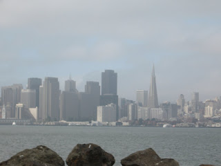 LadyD Books: San Franciscol