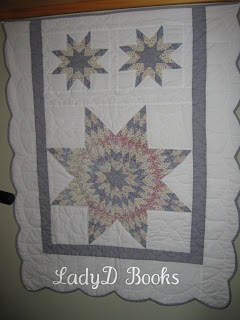LadyD Books: Quilts