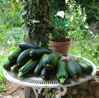 These courgettes are for Peggy our sow.