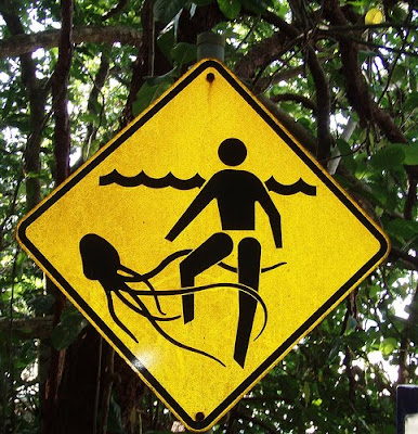 Jellyfish Stinger Danger Sign, Queensland, Australia