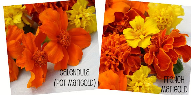 two types of marigolds