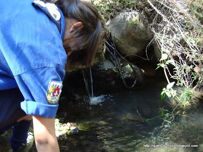 Tomando agua fresca del arroyo