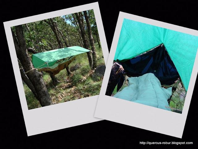 Durmiendo en la Sierra de Milpillas, Zapopan